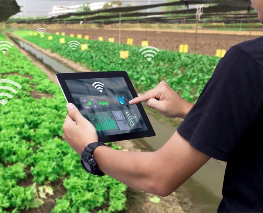 Farm Management Software Design