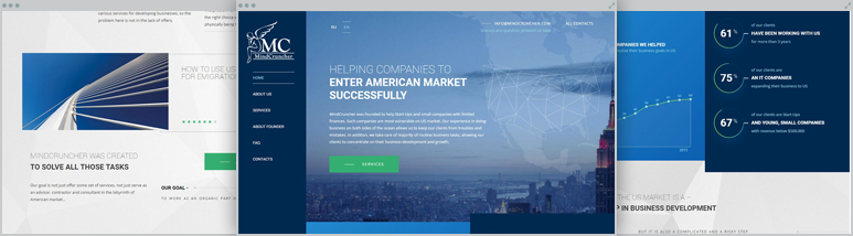 Development landing page for consulting agency in the USA Mindcruncher –